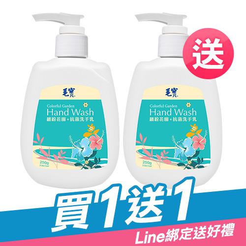 毛寶繽紛花園抗菌洗手乳250g x2